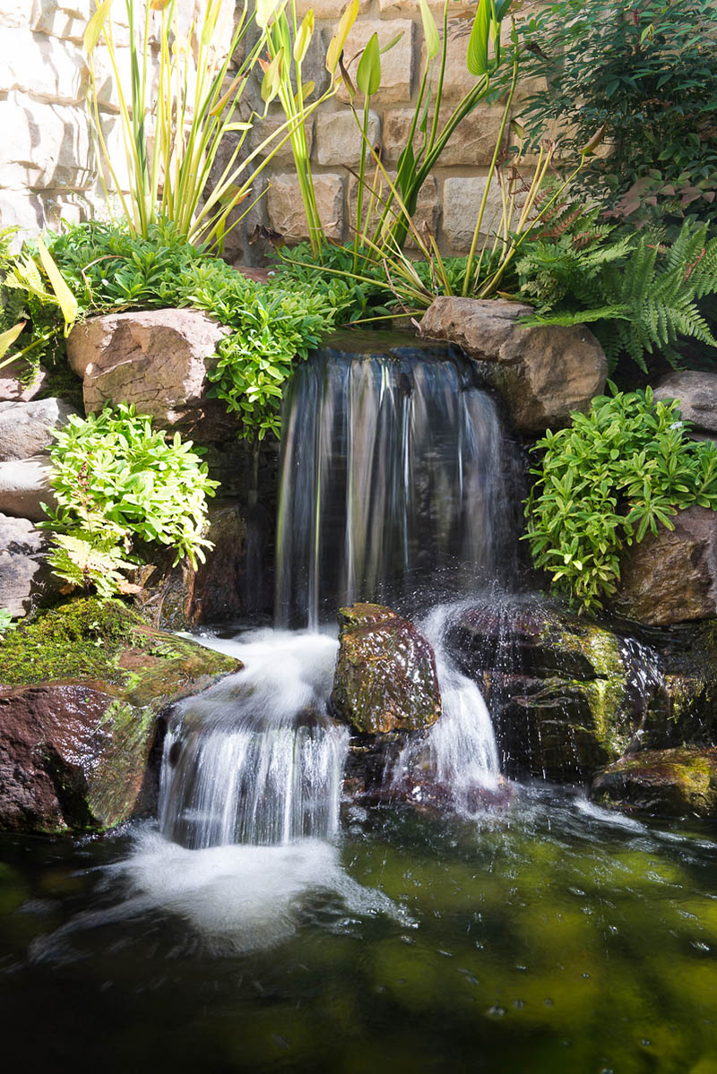 Big Ideals - Small Spaces - Baltimore, Maryland Ponds and ...