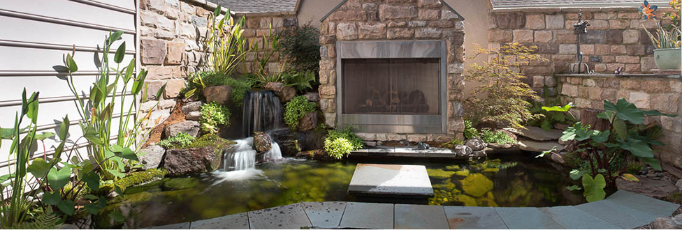 10 Most Common Diy Pond Building Mistakes Baltimore