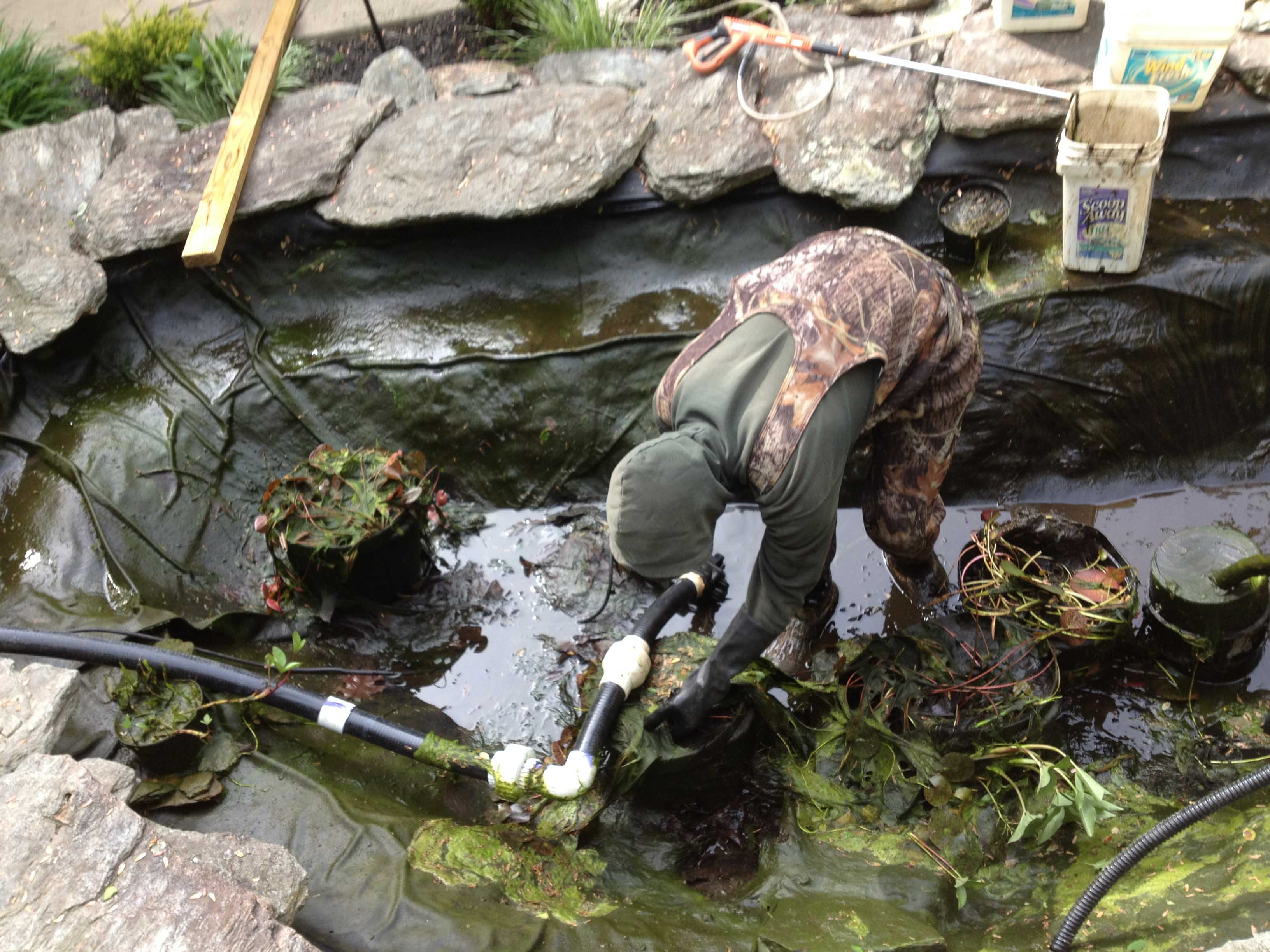 10 pond and waterfall cleaning mistakes baltimore for Building a pond with liner