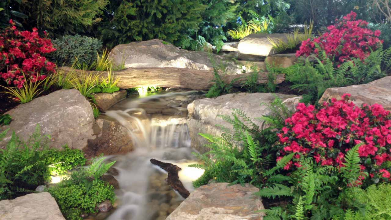 Why add led underwater lights and low voltage landscape for Garden pond lights